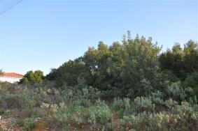 Algarve                Lote                 para venda                 MONTE CANELAS,                 Portimão