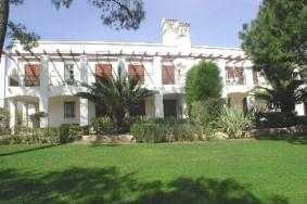 Algarve                 huoneisto                 myytävänä                 Pinheiros Altos,                 Loulé