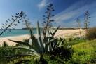 Algarve huvila myytävänä Martinhal, Vila do Bispo