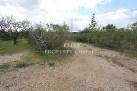 Algarve plot for sale Almancil, Loulé