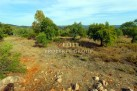 Algarve land for sale Salir, Loulé