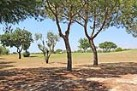 Algarve plot for sale Vilamoura, Loulé
