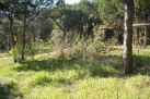 Algarve land for sale Quinta do Lago, Loulé