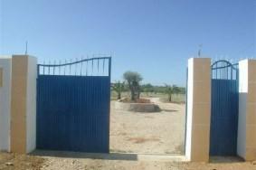 Algarve                Terreno                 en venta                 Estoi,                 Loulé