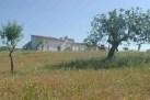 Algarve land for sale Estoi, Loulé