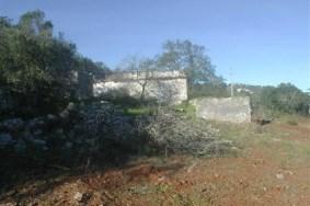 Algarve                Terrain                 à vendre                 Loulé,                 Loulé