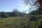 Algarve land for sale Loulé, Loulé